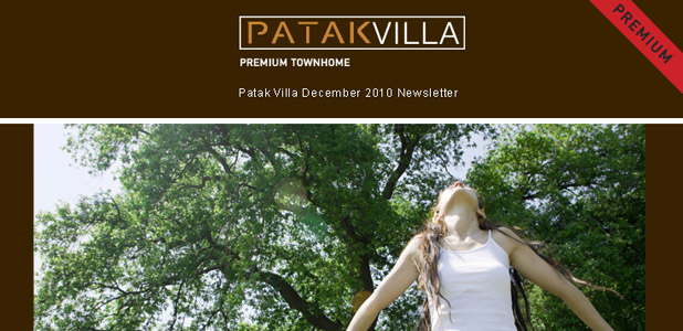 Patak Villa, Newsletter Dec 2010